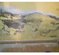 2 tips para aislar tu casa de la humedad