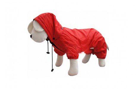 ¡Salva a tu perro de la lluvia!