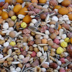 ¿Adicto a los frutos secos? Por esto es bueno comerlos