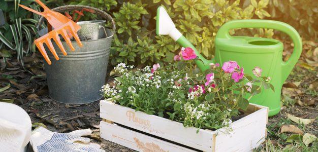 Jardines verticales y muros verdes para cualquier superficie
