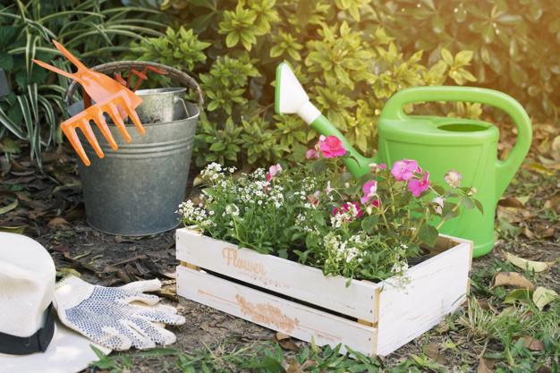 jardinero y herramientas para trabajar.